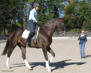 "Developing dressage coach Debbie McDonald instructing Allison Kavey, who rode Cacharel in the clinic, said, ""It was a great opportunity for this horse and me to get this level of instruction before we went to Florida."" (Photo by Nancy Jaffer)"